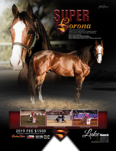 Super Corona Barrel Ad 2019 Season RGB.j