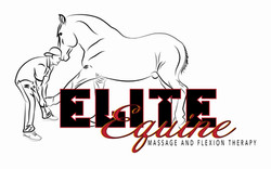 Elite Equine Massage and Flexion Therapy