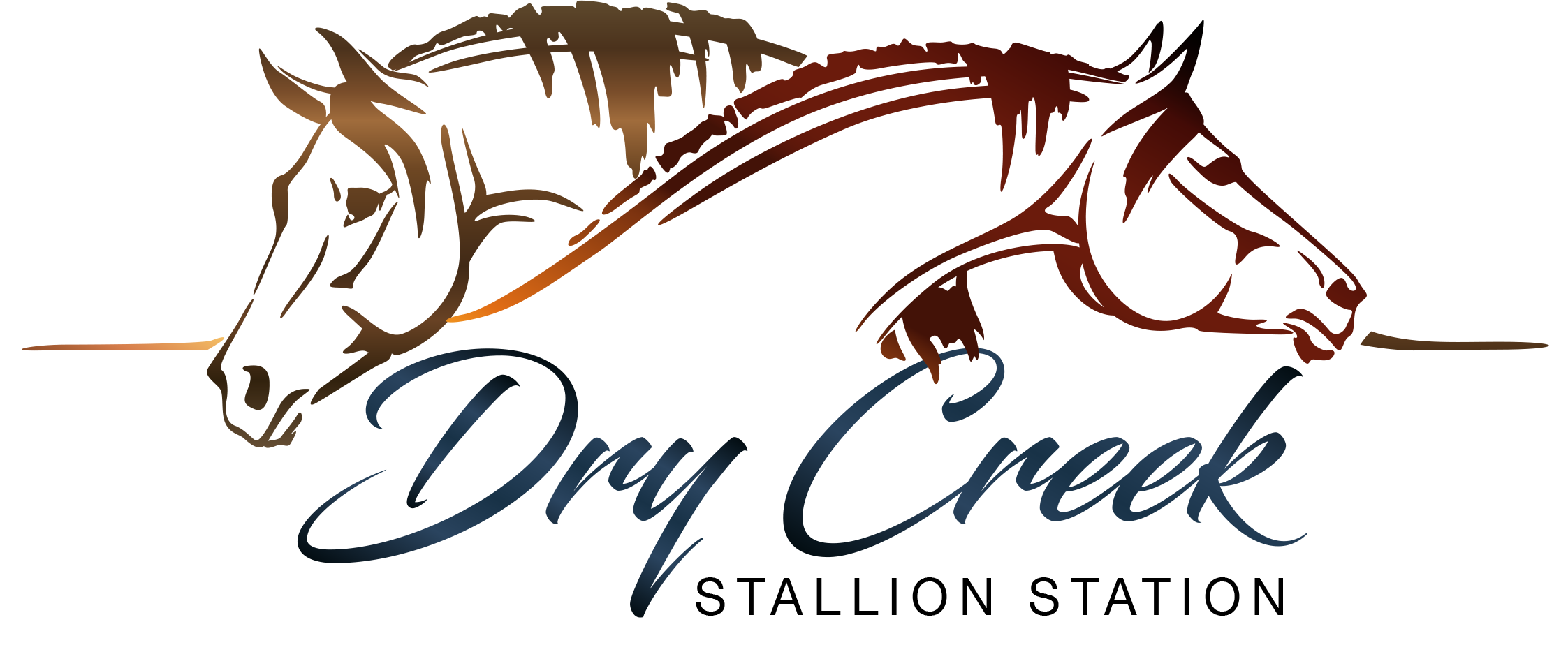 Dry Creek Stallion Station Logo