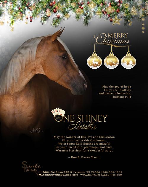 One Shiney Metallic Christmas Ad RGB.jpg