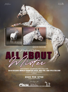All About Mister 2020 Season Ad RGB FIna