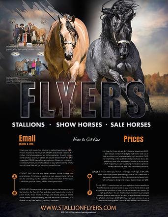 Horsepower Graphics Stallion Flyer Ad 20