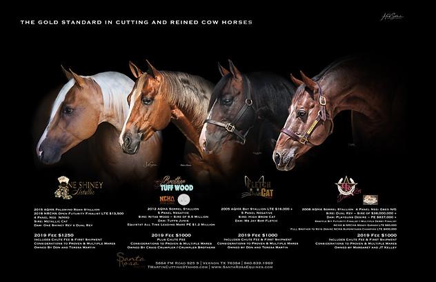 Santa Rosa Equine Stallion Lineup