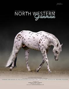 Northwestern Gunman 2020 Ad RGB.jpg