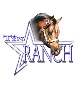 Tin Star Ranch