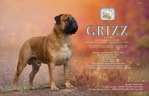 Grizz March 2020 Ad RGB.jpg