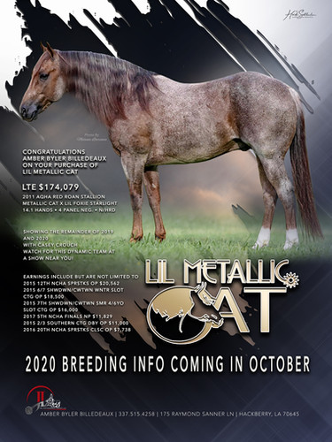 Lil Metallic Cat Introductory Ad.jpg