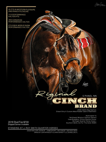 Riginal Cinch Brand