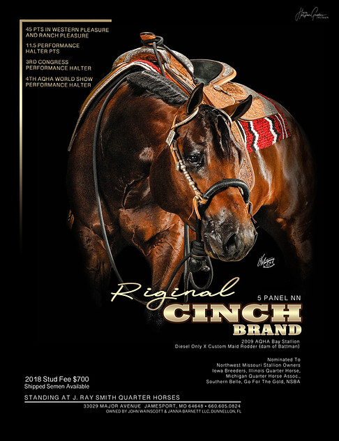 Riginal Cinch Brand Ad.jpg