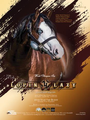 Lopin Lazy