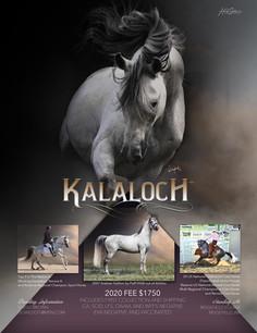 Kalaloch 2020 Season Ad RGB.jpg
