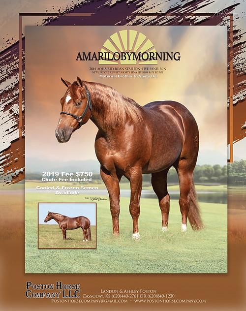 Amarillobymorning 2019 Season Ad RGB.jpg