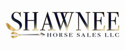 Shawnee Horse Sales LLC Logo With Gold O