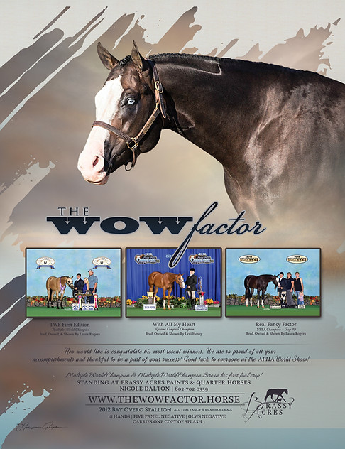 The Wow Factor Ad August 2018 headshot R
