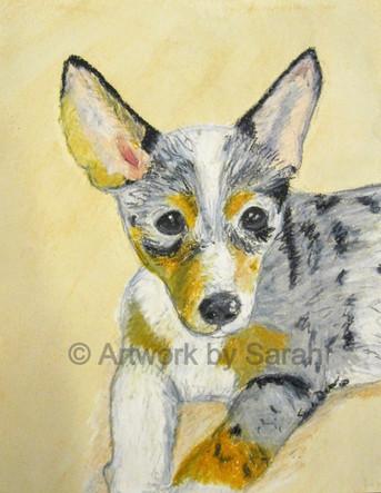 Puppy Portrait #3: Ishka