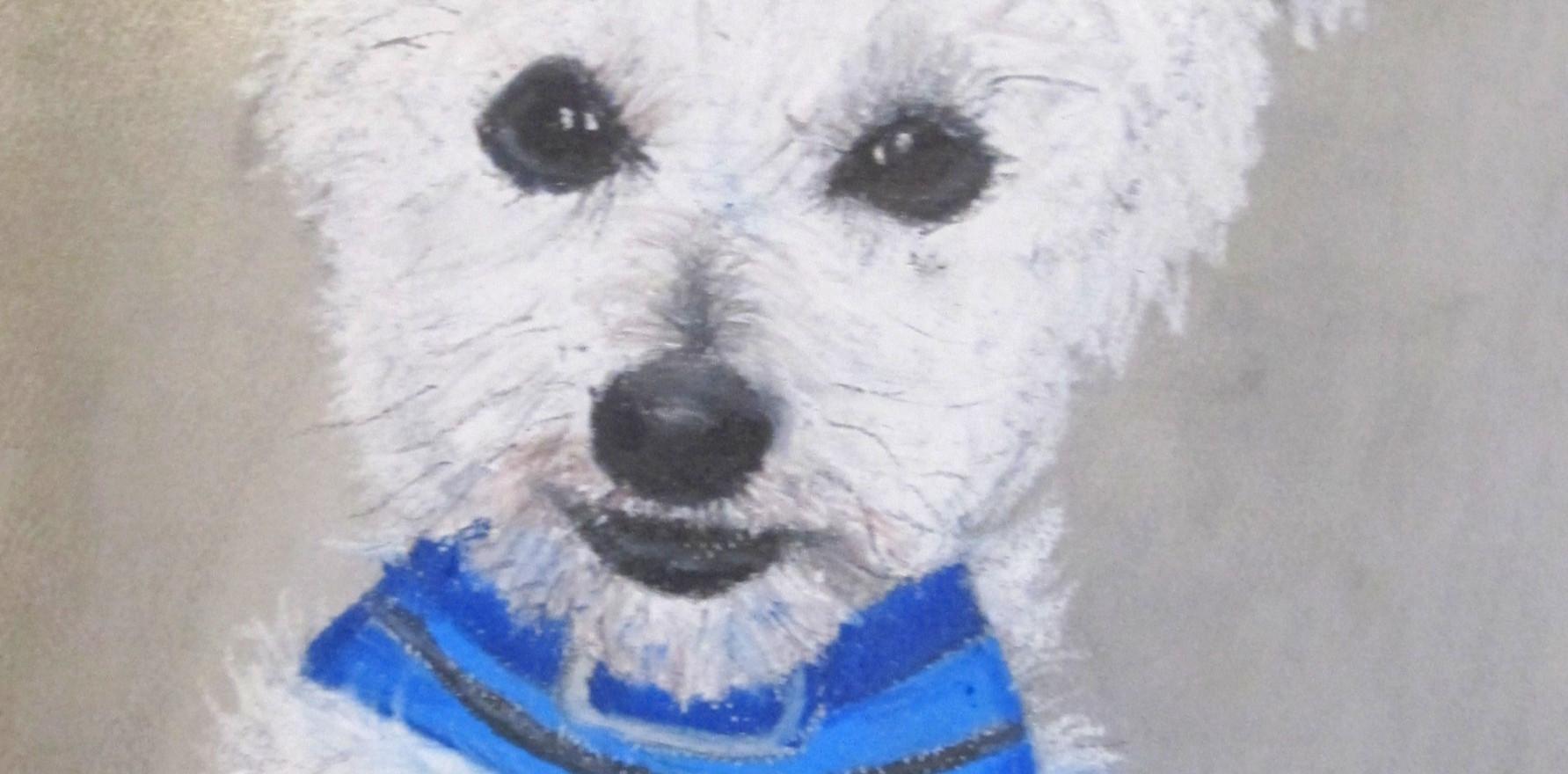 Puppy Portrait #1: Stanley