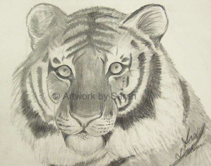 Portrait of a Tiger_edited.jpg