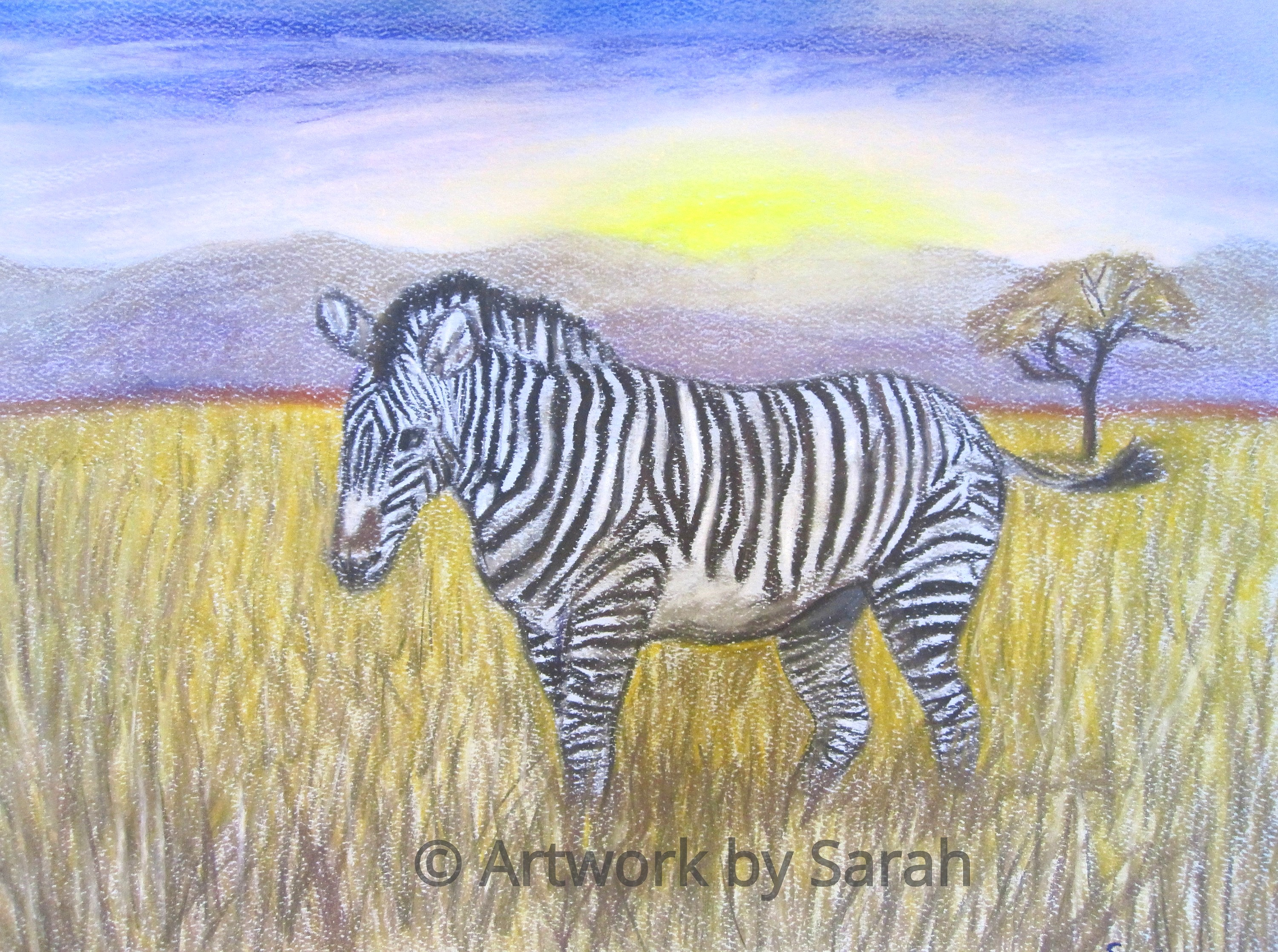 Alone on the Savannah
