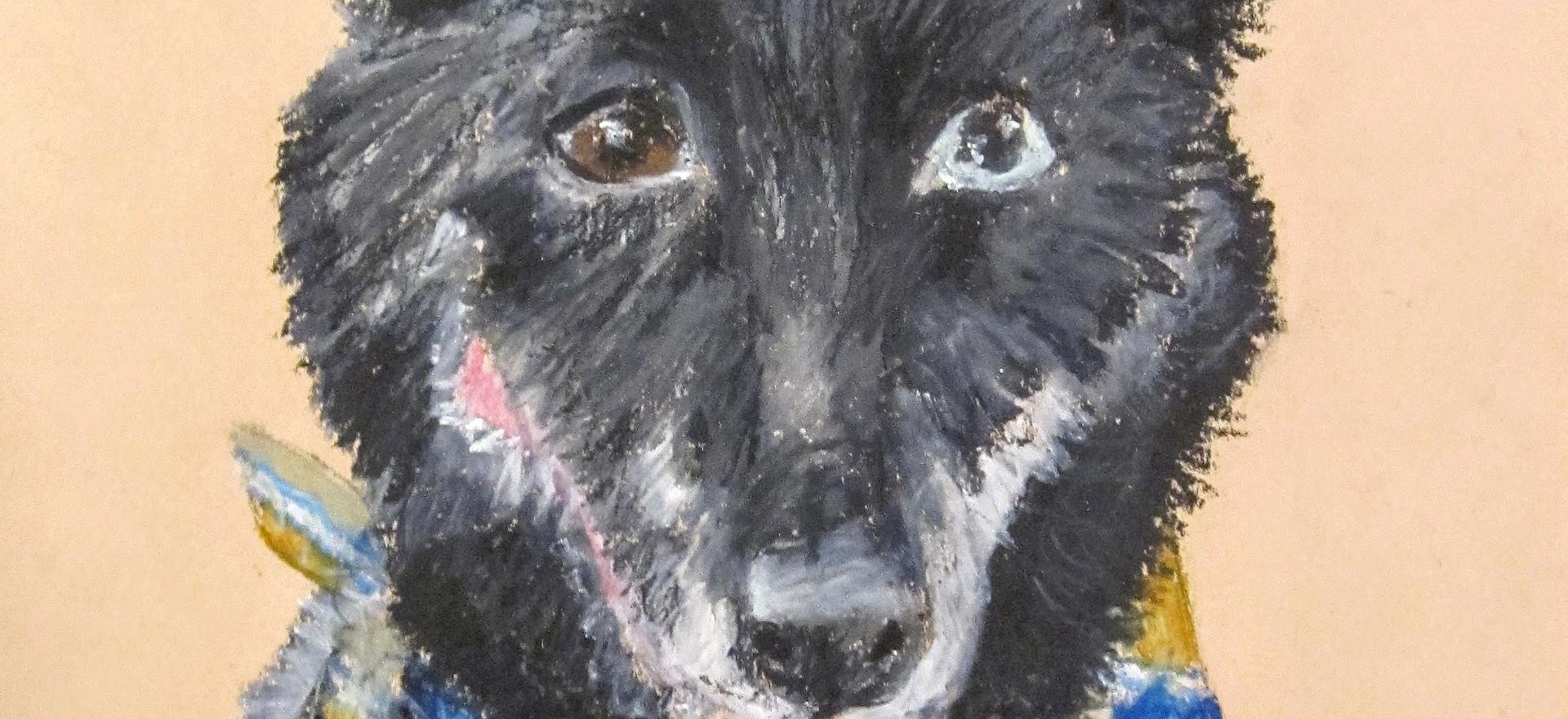 Puppy Portrait #2: Elsa