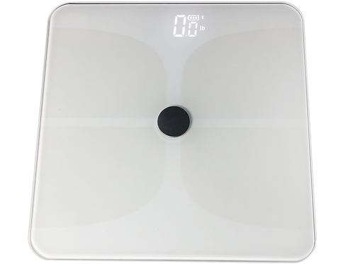 Balance Body Composition Scale