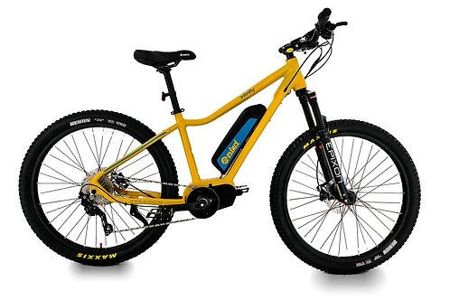 Evinci Infinity E-Mountain Bike (Mid Drive)