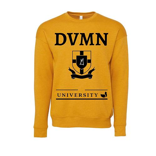 DVMN University Cedar