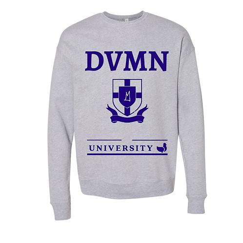 DVMN University Pigèon
