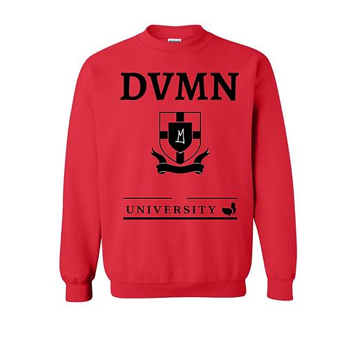 DVMN University Rari