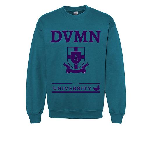 DVMN University Aqua