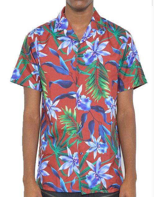 Le champe tropical