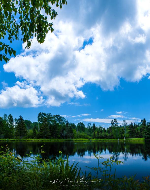 La beauté des plans d'eau