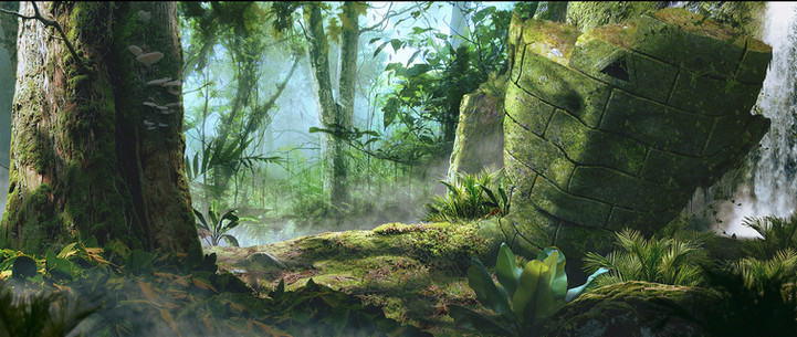 Secret of the rainforest