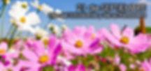 21-de-Septiembre-Día-de-la-Primavera.jpg