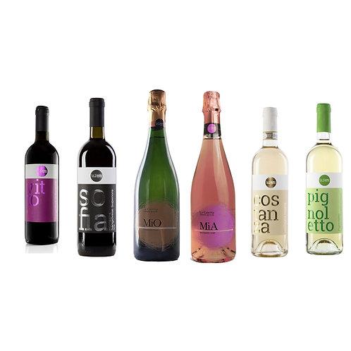 Degustazione vini della Casetta 6 bottiglie miste