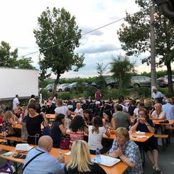 Cinema in the vineyard