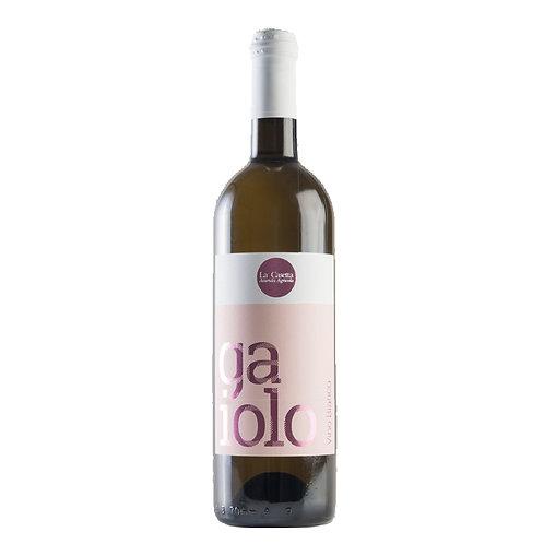 Gaiolo -Vino bianco da tavole 6 bottiglie