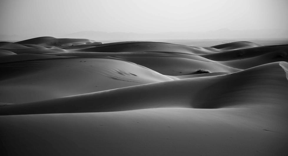 NY1A7638_BE_SEY_Desert.jpg