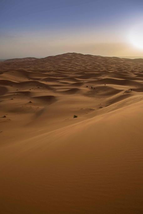 NY1A7905_desert_sunrise.jpg