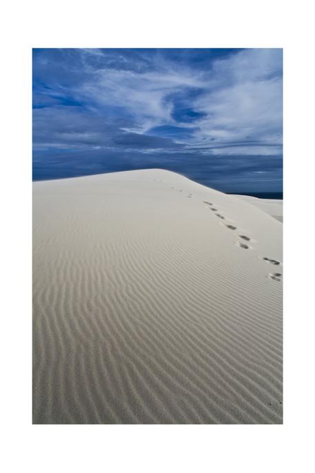 australia-sanddune-2011_small.jpg