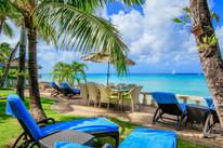 Barbados singing holiday garden.jpg