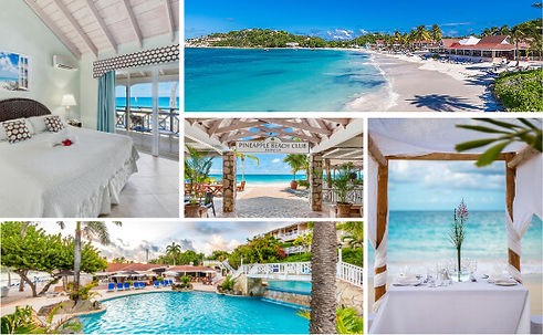 pineapple beach club collage.jpg