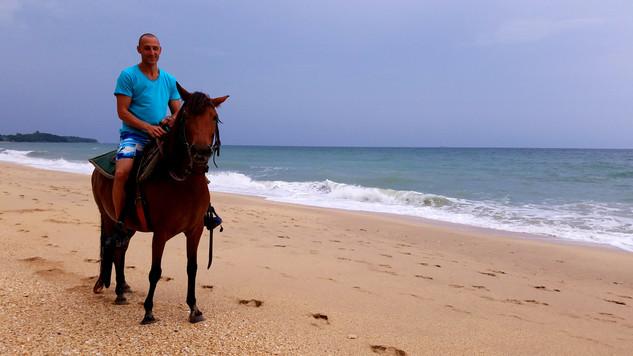 Zerian Horse Koh Lanta.jpg