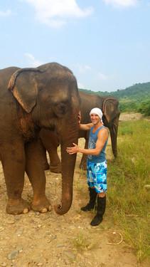 Zerian Elephant.jpg