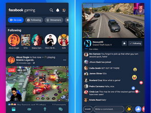 Get Paid as a Gamer on Facebook (application available here)