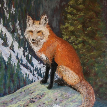 """Red Fox on Lookout - 16""""x12"""""""