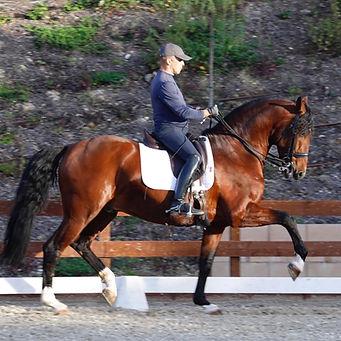 espertaco c horse ranch .jpg