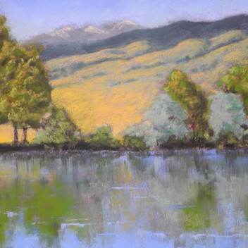 Coot Lake Reflections - Sold