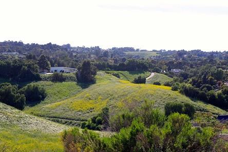 03-21-2015-Blog1-Hills-Backyards-SM.jpg