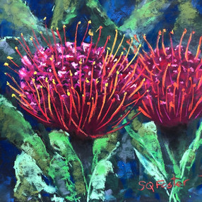 "Red Pincushion Protea - 9"" x 9"""