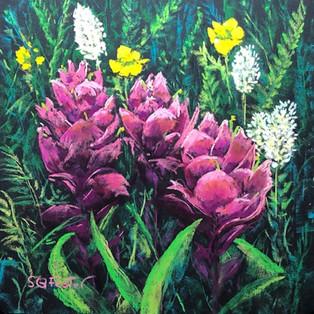 "Rosy Paintbrush - 9"" x 9"""